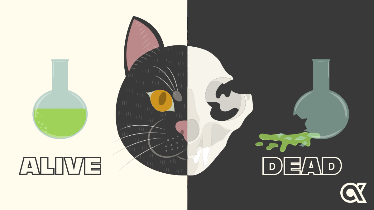 Recognition and Schrödinger's Cat—A Purrfect Match